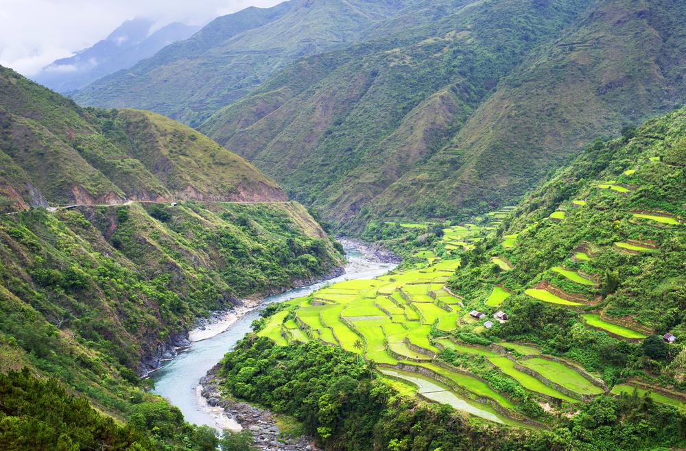 Beautiful rice terraces in Cordillera