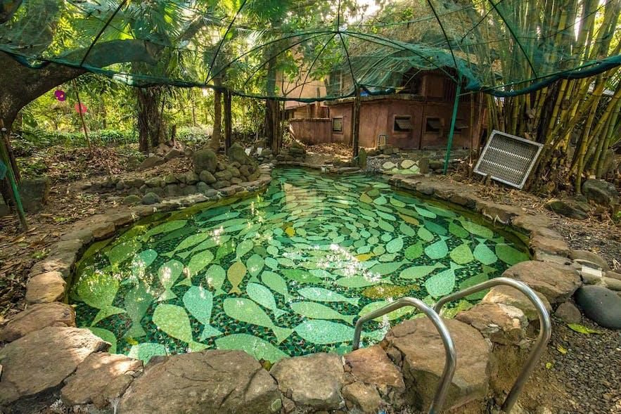 A mosaic pool in Prado Farms
