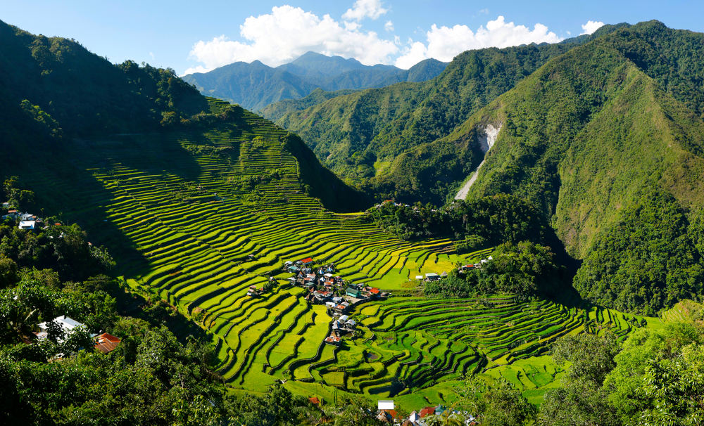 Green landscape of Batad Rice Terraces