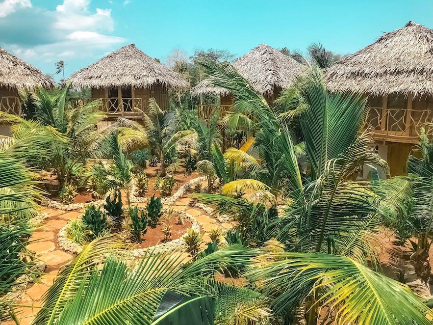 Rooms of Mandala Tribe Tree Houses