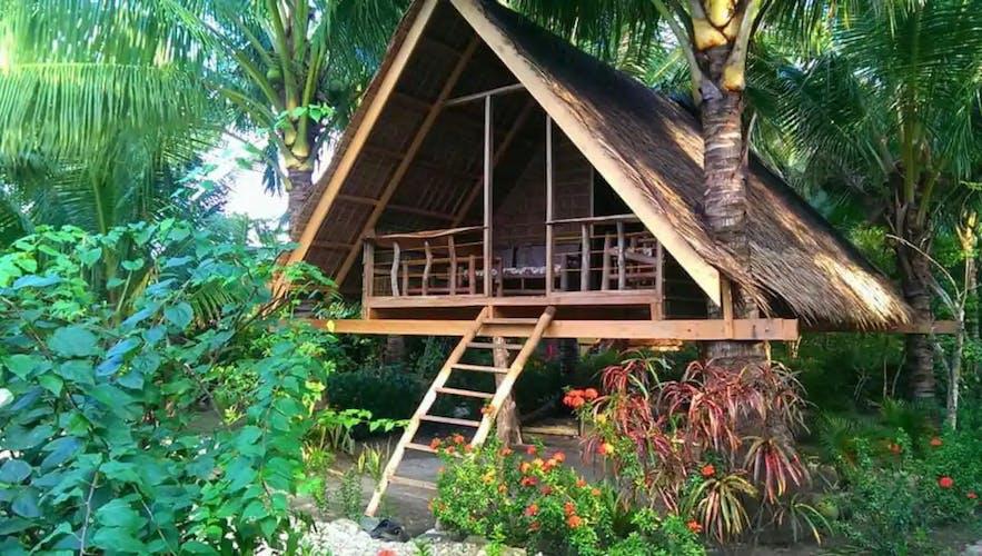 Coconut Tree House in Mindoro