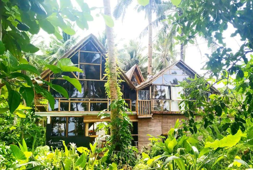 Exterior of Tarzan's Treehouse in Siargao