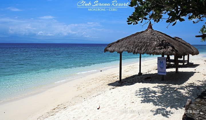 Beachfront of Club Serena Resort Moalboal