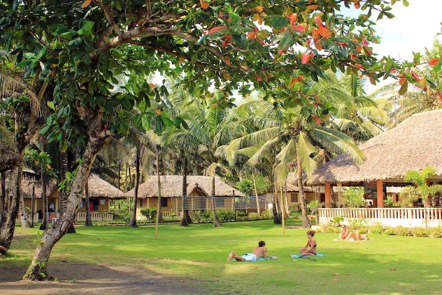 Amor Farm Beach Resort's common outdoor area