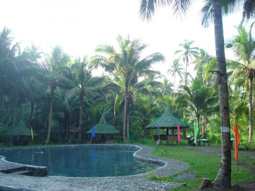 Natural spring pool in Tropical Hot Spring Paradise