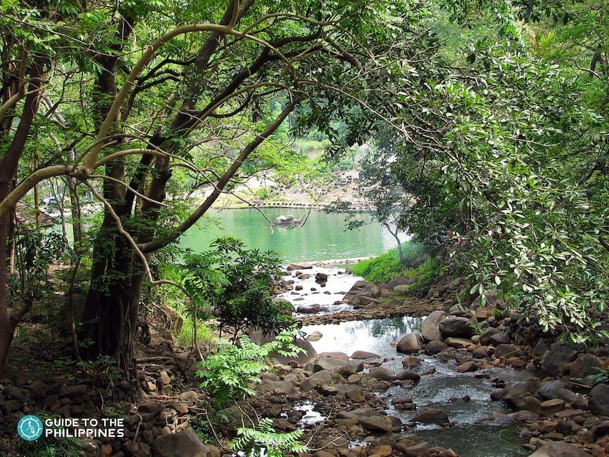 Natural spring pools in Mambukal Mountain Resort-2