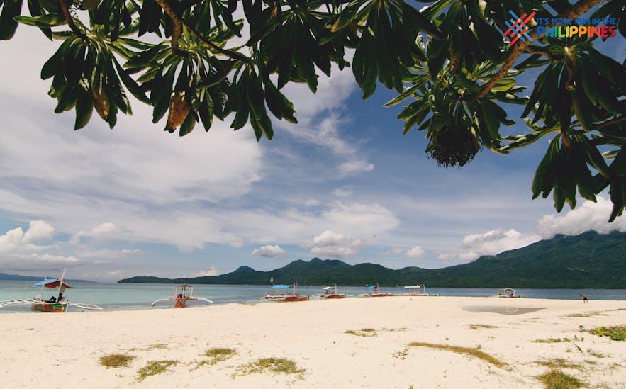 Shoreline of Mantigue Island
