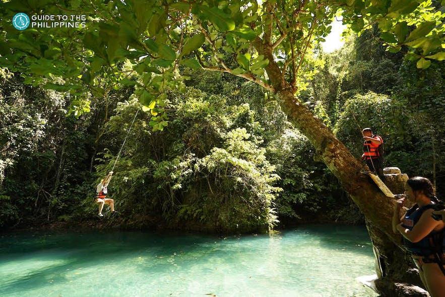 Tourists swinging from tree at Kawasan Falls