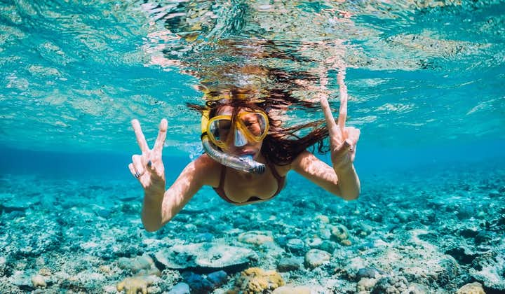 Snorkeling while Island Hopping at Boracay